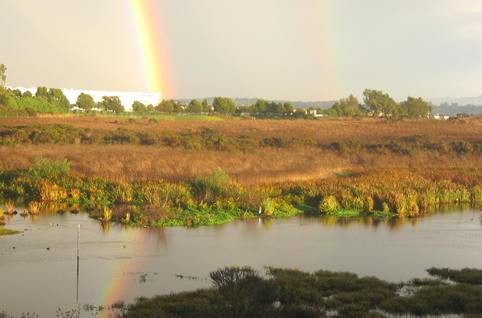 Rainbow Over Slough