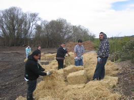 Students And Volunteers Help  with Red-legged Frog-Pond Native-Plant  Restoration