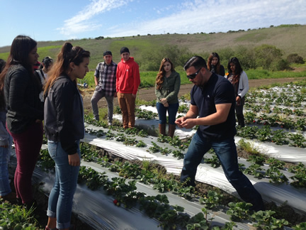 Students with Frank Estrada, Reiter Berry Farms