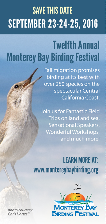 Save this date_ September 23-24-25. Twelfth Annual Monterey Bay Birding Festival