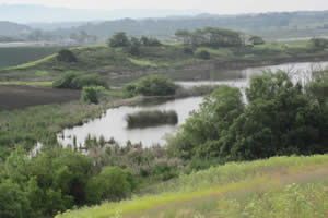watsonville wetlands climate action
